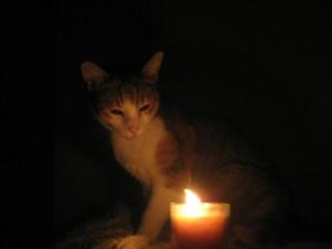 december-2008-black-out-2